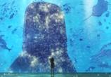 Сцена из фильма Дети моря / Kaijuu no Kodomo (2019)