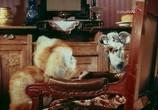 Мультфильм Кошки-мышки (1975) - cцена 2