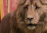 Фильм Хроники Нарнии: Лев, Колдунья и Волшебный Шкаф / The Chronicles of Narnia: The Lion, the Witch and the Wardrobe (2005) - cцена 5