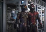 Фильм Человек-муравей и Оса / Ant-Man and the Wasp (2018) - cцена 5