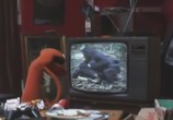 Сериал Мохнатики / Fur TV (2010) - cцена 2