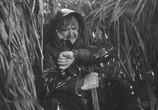 Фильм Погоня (1965) - cцена 3