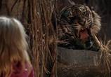 Сцена из фильма Птичка на проводе / Bird on a Wire (1990) Птичка на проводе сцена 15
