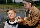 Сцена из фильма Крепкий орешек (1967) Крепкий орешек сцена 5