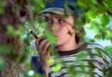 Фильм Берегись, большой брат! / Big Brother Trouble (2000) - cцена 8