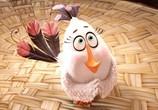 Мультфильм Angry Birds в кино / The Angry Birds Movie (2016) - cцена 1