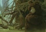 Сцена из фильма В гости к сказке - Чудеса под Новый Год (1972) В гости к сказке - Чудеса под Новый Год сцена 2