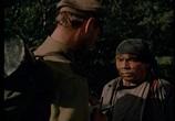 Сцена из фильма Дерсу Узала (1961) Дерсу Узала сцена 6