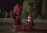 Сцена из фильма Приключения медведя Бригсби / Brigsby Bear (2017)