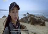 Сцена из фильма Экстремальный Китай / Extreme China (2018) Экстремальный Китай. Хайнань сцена 4