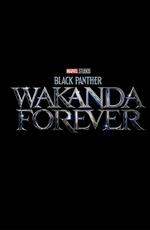 Чёрная Пантера 2: Ваканда навсегда / Black Panther: Wakanda Forever (2022)