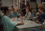 Сцена из фильма Голубая каска / Casque bleu (1994) Голубая каска сцена 11