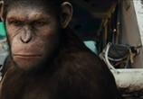 Фильм Восстание планеты обезьян / Rise of the Planet of the Apes (2011) - cцена 6