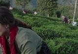 Сцена из фильма Сибель / Sibel (2018) Сибель сцена 2