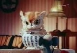 Мультфильм Кошки-мышки (1975) - cцена 1