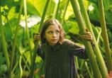 Сцена из фильма Таинственный сад / The Secret Garden (2020)