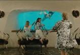 Сцена из фильма Развратная жизнь Жерара Флока / La vie dissolue de Gérard Floque (1987) Развратная жизнь Жерара Флока сцена 20