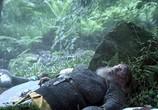 Сцена из фильма 1066 / 1066 (2009) 1066 сцена 6