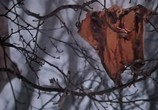 Фильм Аты-баты, шли солдаты (1976) - cцена 5