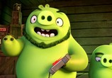 Мультфильм Angry Birds в кино / The Angry Birds Movie (2016) - cцена 3