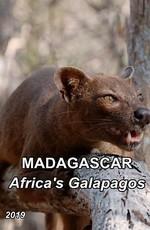 Мадагаскар: Африканский Галапагос