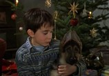Фильм Малыш Рекс - четвероногий детектив / Baby Rex - Der kleine Kommissar (1997) - cцена 2