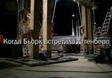 ТВ Когда Бьорк встретила Аттенборо / When Bjork met Attenborough (2013) - cцена 1
