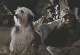 Сцена из фильма Парень и его пёс / A Boy And His Dog (1975) Парень и его пёс сцена 6
