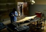 Сцена из фильма Болота / The Glades (2010) Болота сцена 5