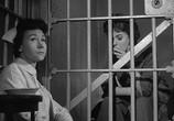 Сцена из фильма Я хочу жить! / I Want to Live! (1958) Я хочу жить! сцена 8