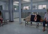 Сцена из фильма Тэмми / Tammy (2014)