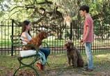 Сцена из фильма Думай как собака / Think Like a Dog (2020)
