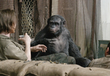 Фильм Планета обезьян: Революция / Dawn of the Planet of the Apes (2014) - cцена 4