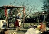 Фильм Яблоко раздора (1962) - cцена 3
