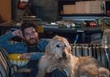 Фильм Собачьи дни / Dog Days (2018) - cцена 1