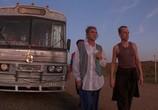 Фильм Приключения Присциллы, королевы пустыни / The Adventures of Priscilla, Queen of the Desert (1994) - cцена 2