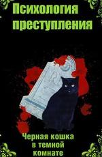 Психология преступления. Чёрная кошка в тёмной комнате (2021)