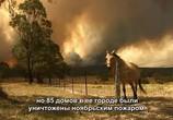 ТВ Австралия в огне / Australia Burning (2020) - cцена 6