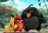 Мультфильм Angry Birds в кино / The Angry Birds Movie (2016) - cцена 2