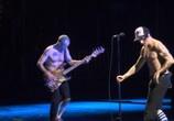 Сцена из фильма Red Hot Chili Peppers:  Live At Bonaroo Festival (2012) Red Hot Chili Peppers:  Live At Bonaroo Festival сцена 2