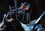 Сцена из фильма Трансформеры: Месть падших / Transformers: Revenge of the Fallen (2009) Трансформеры: Месть падших сцена 7