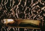 Фильм Убить Билла 2 / Kill Bill: Vol. 2 (2004) - cцена 2