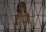 Фильм Самка / Femina ridens (1969) - cцена 2