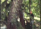 Фильм Волшебный король / Beings (2002) - cцена 1