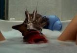 Фильм Кошмар на улице Вязов / A Nightmare on Elm Street (1984) - cцена 4