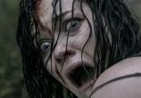 Фильм Зловещие мертвецы: Черная книга / Evil Dead (2013) - cцена 1