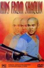 Храм Шаолинь 2: Дети Шаолиня / Kids from Shaolin (1984)