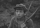 Фильм О чём молчала тайга (1966) - cцена 1
