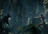 Фильм Тарзан. Легенда / The Legend of Tarzan (2016) - cцена 4