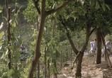 Сцена из фильма Год пробуждения / El año de las luces (1986) Год пробуждения сцена 14